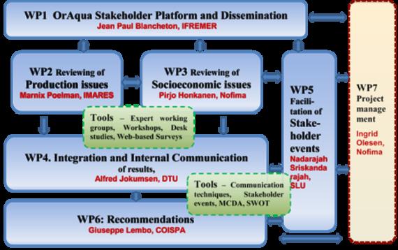 WP organisation scheme